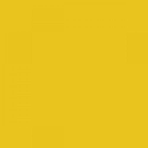 RAL 1021 Rape Yellow Aerosol Spray Paint